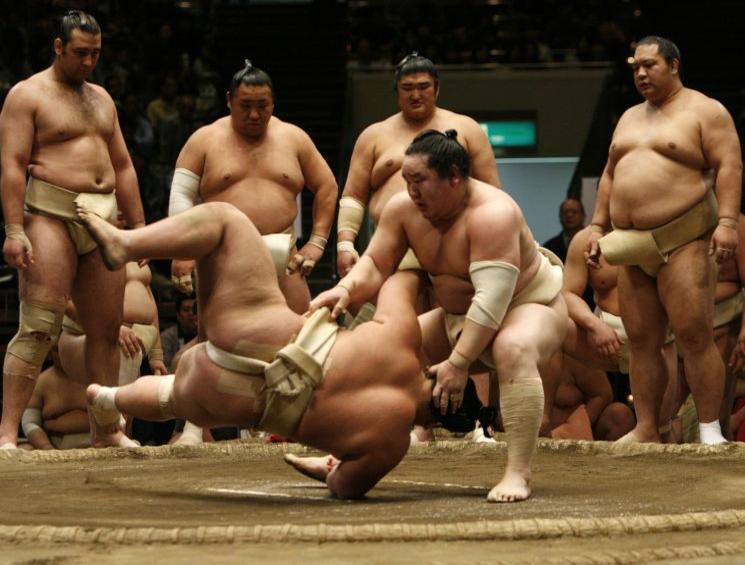 combat-de-sumo-a-tokyo_diaporama.jpg